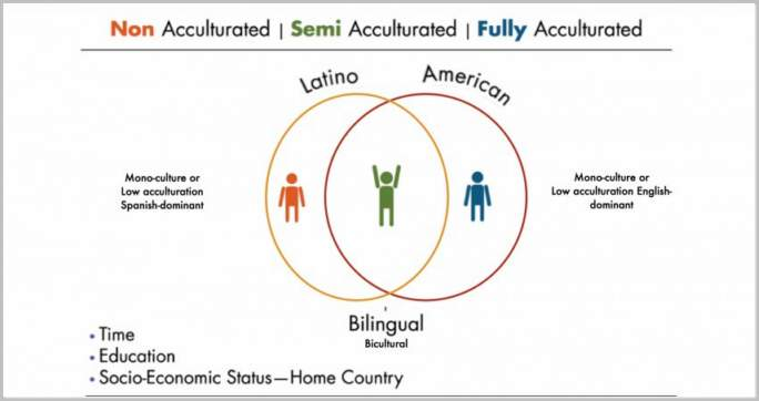 What Is Acculturation And How Does This Culture Change Process Work