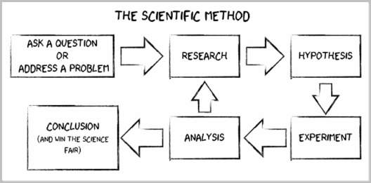 scientific method | School Ideas | Pinterest | Scientific method ...